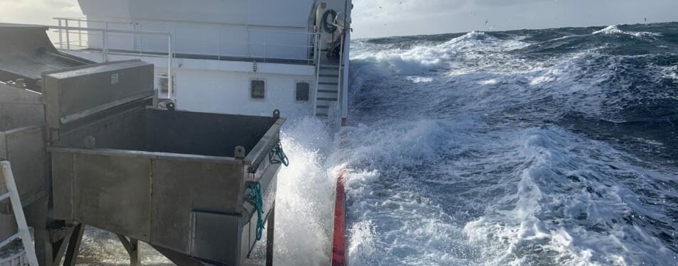 Ausgefischt – Die Nordsee und...